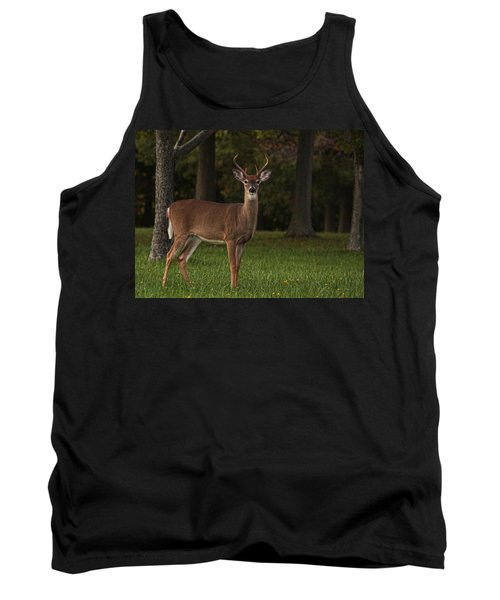 Tank Top featuring the photograph Deer In Headlight Look by Tammy Espino