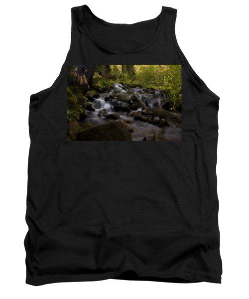 Tank Top featuring the photograph Early Autumn Cascades by Ellen Heaverlo