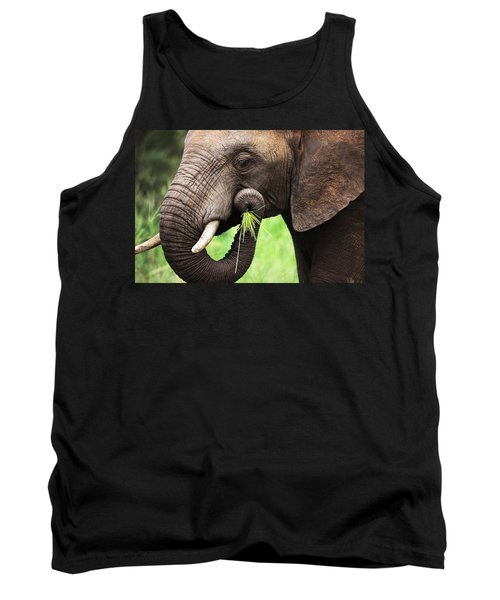 Elephant Eating Close-up Tank Top