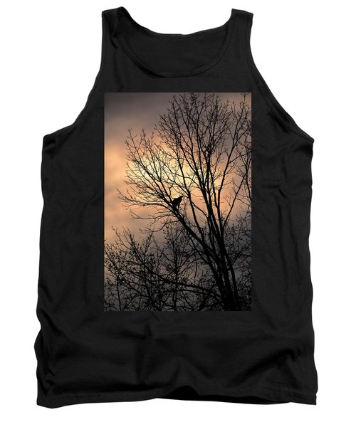 End Of The Day  Red Tailed Hawk Tank Top