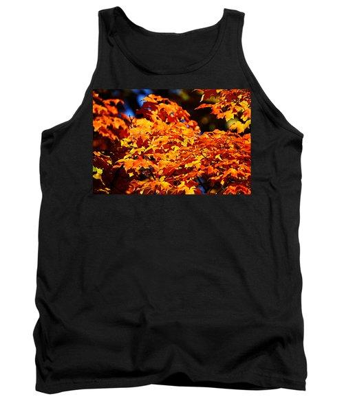 Fall Foliage Colors 16 Tank Top