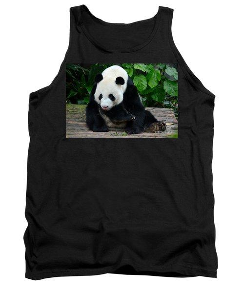 Giant Panda With Tongue Touching Nose At River Safari Zoo Singapore Tank Top