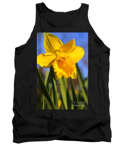 Golden Glory Daffodil Tank Top