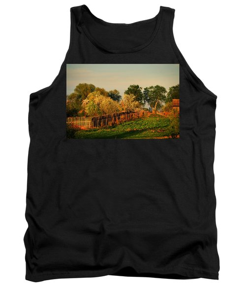 Golden Light On The Blooming Cherry Trees 1 Tank Top