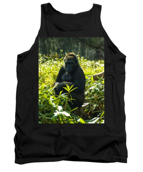 Gorilla Sitting On A Stump Tank Top by Chris Flees