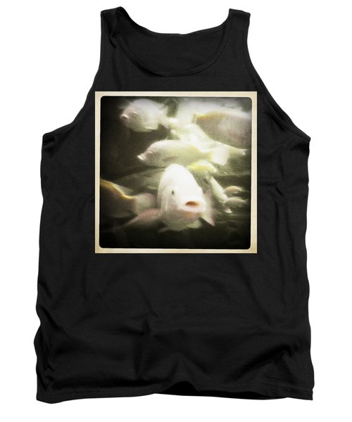 Tank Top featuring the photograph Gouramis by Bradley R Youngberg