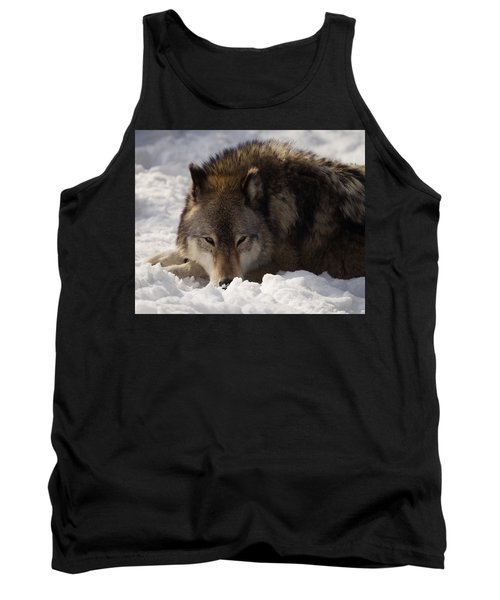 Gray Wolf In Snow Tank Top