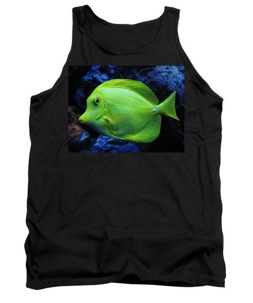 Green Fish Tank Top