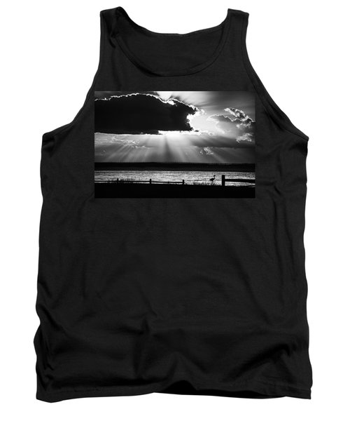 Heron And  The Cloudburst Tank Top by Michael Thomas