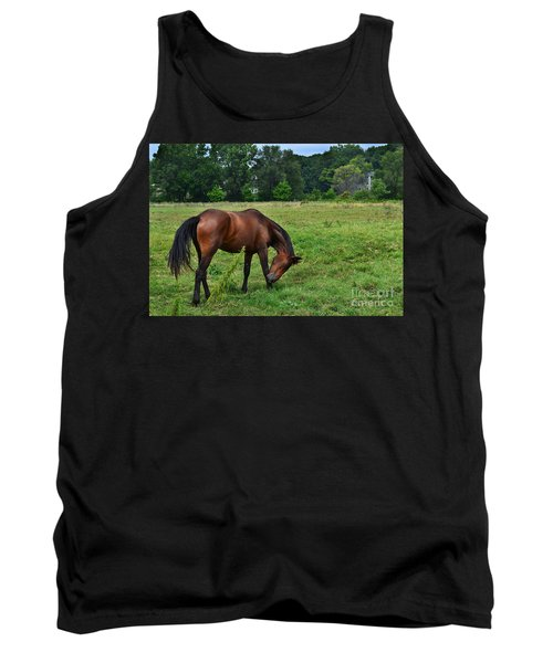 Horse In Holland Michigan Tank Top