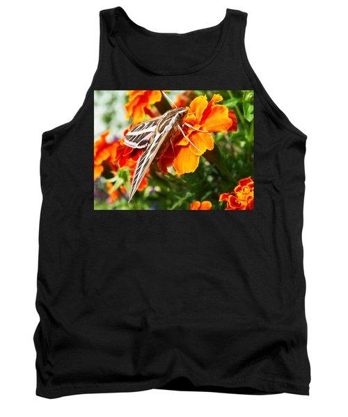 Hummingbird Moth On A Marigold Flower Tank Top by Nadja Rider