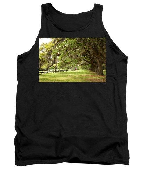 Live Oak Trees In Charleston Tank Top