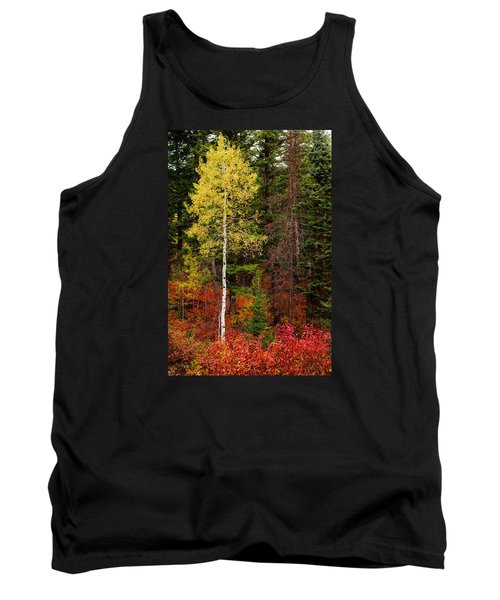 Lone Aspen In Fall Tank Top