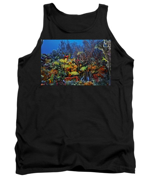 Lynns Reef On A Perfect Day Tank Top