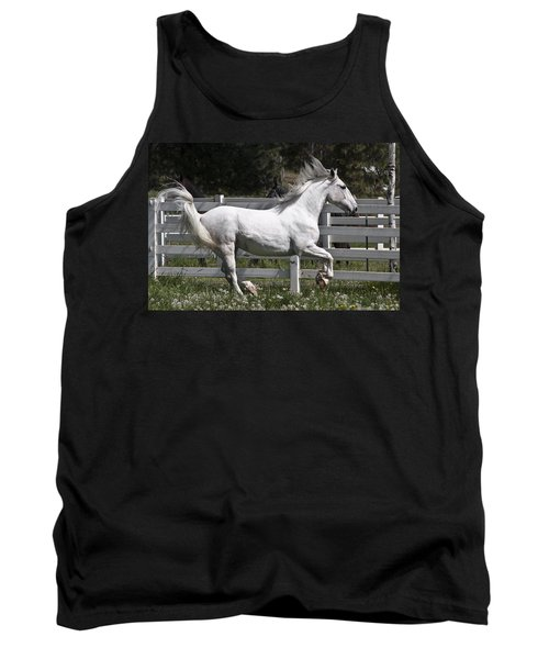 Tank Top featuring the photograph Maestoso Aurorra D3990 by Wes and Dotty Weber