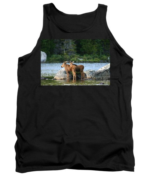Moose Calves In Maine Tank Top by Jeannette Hunt