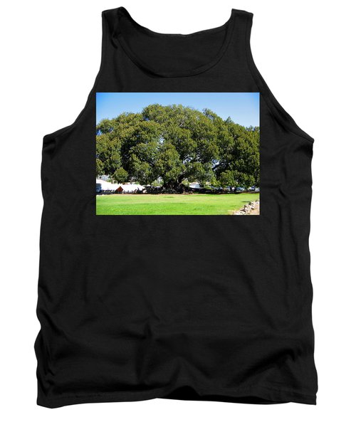 Moreton Fig Tree In Santa Barbara Tank Top