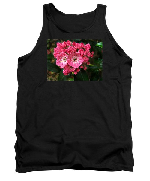 Mountain Laurel ' Olympic Fire ' Tank Top