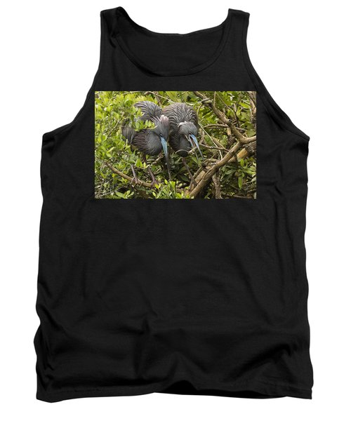 Tank Top featuring the photograph Nest Building by Priscilla Burgers