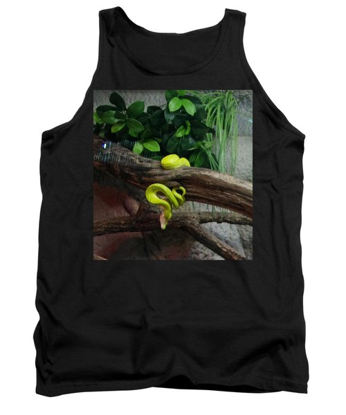 Out Of Africa Tree Snake Tank Top