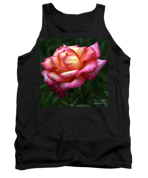 Passionate Shades Of A Perfect Rose Tank Top