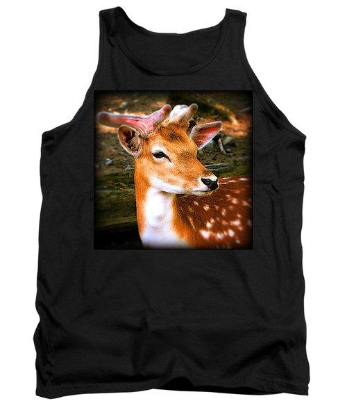 Portrait Male Fallow Deer Tank Top