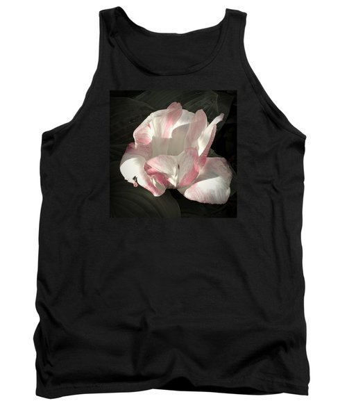 Pretty In Pink Tank Top by Photographic Arts And Design Studio