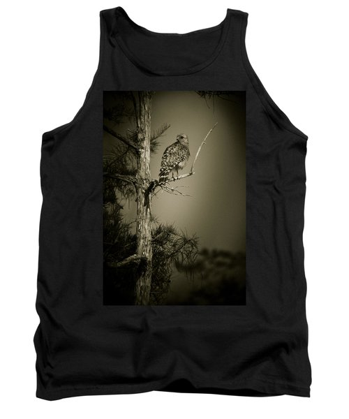 Red Tail Hawk On Loop Road Tank Top