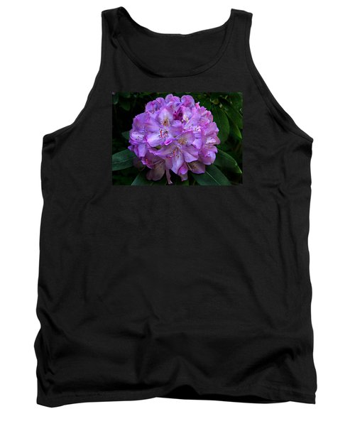 Rhododendron ' Roseum Elegans '  Tank Top by William Tanneberger