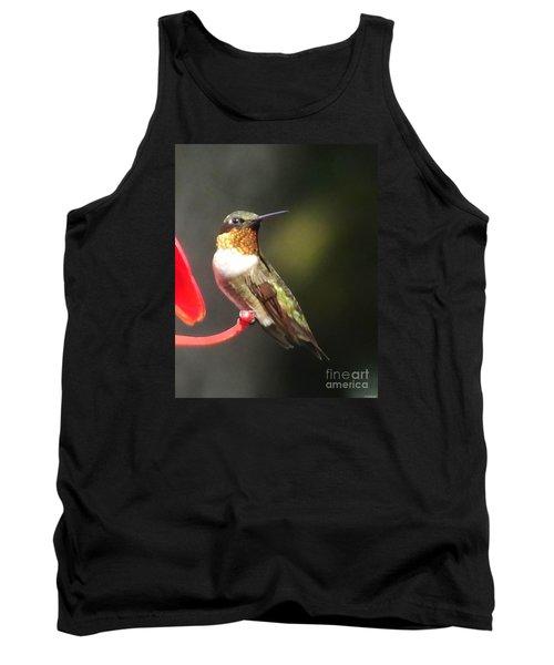 Ruby Throated Hummingbird 2 Tank Top