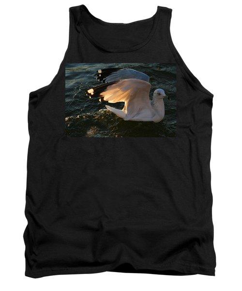 Sea Gulls At Sunset Tank Top