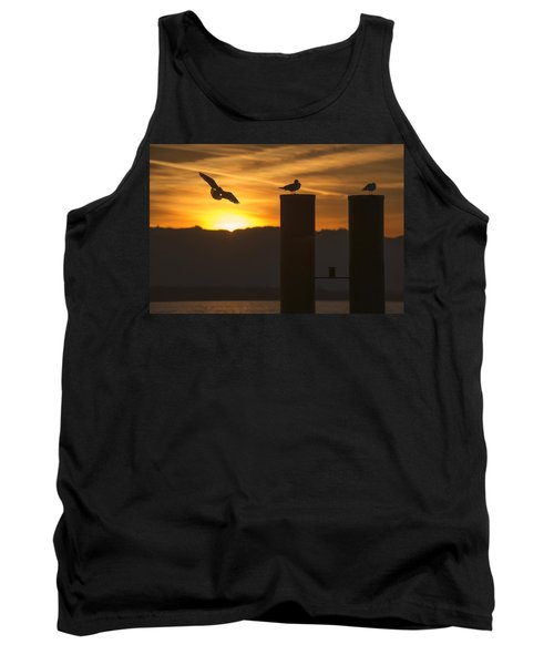 Seagull In The Sunset Tank Top by Chevy Fleet