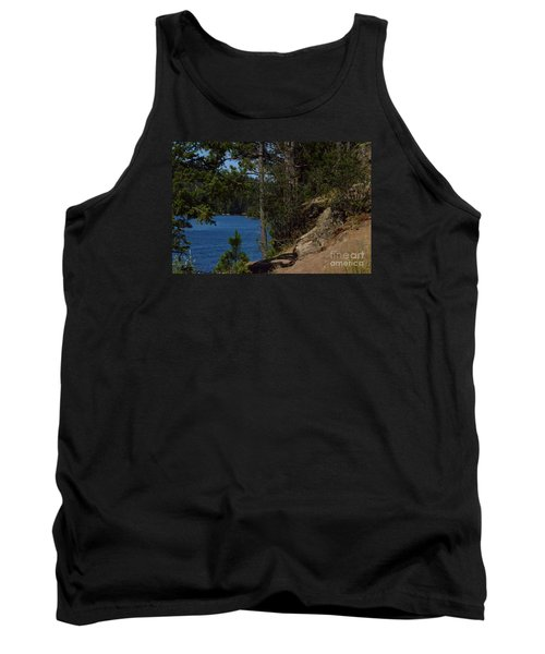 Shine On Tank Top by Greg Patzer