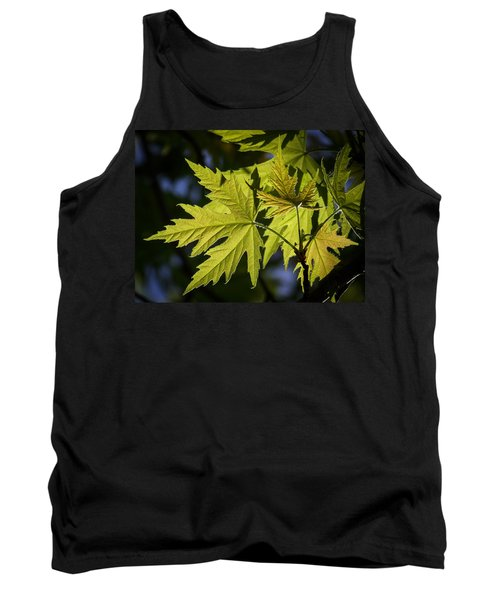 Silver Maple Tank Top