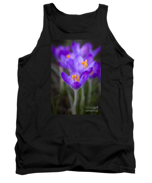 Spring Has Sprung Tank Top by Clare Bambers
