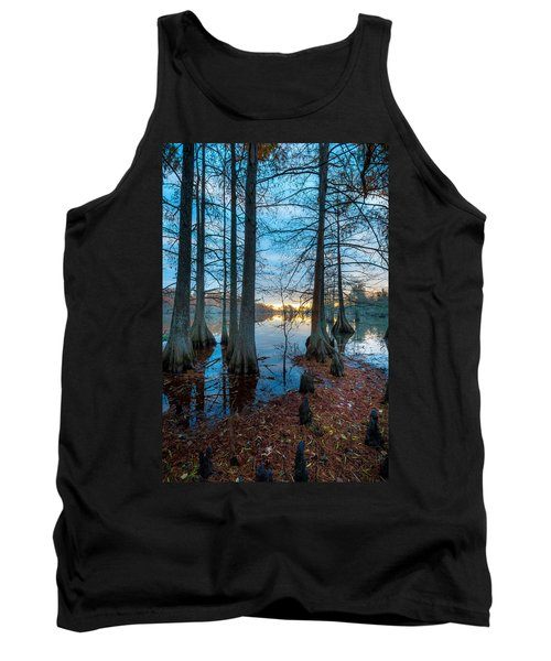 Steinhagen Reservoir Vertical Tank Top