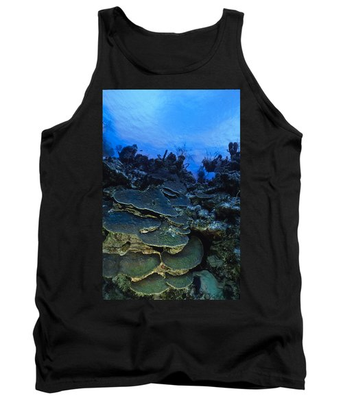 Steps Of The Sea Tank Top