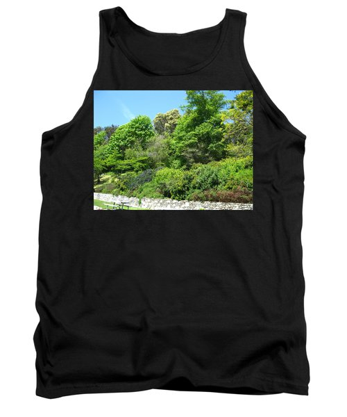 Stone Wall 2 Tank Top by David Trotter
