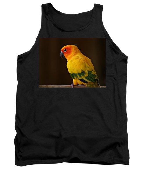 Sun Conure Parrot Tank Top