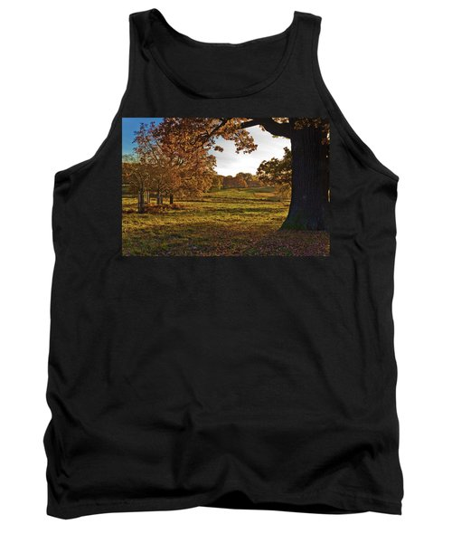 Sunny Richmond Autumn Tank Top