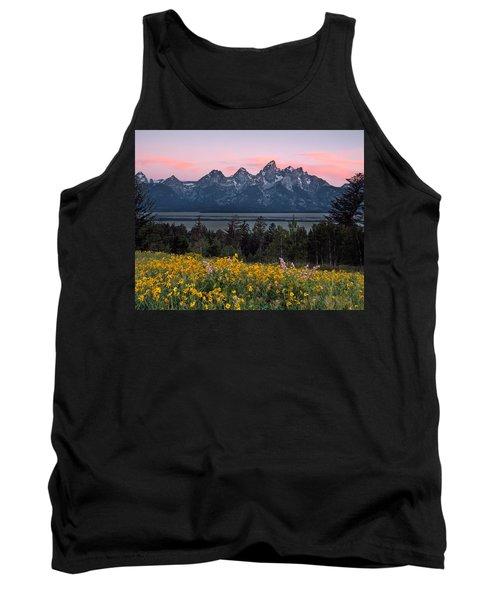 Teton Spring Tank Top by Leland D Howard