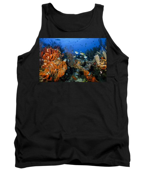 The Active Reef Tank Top