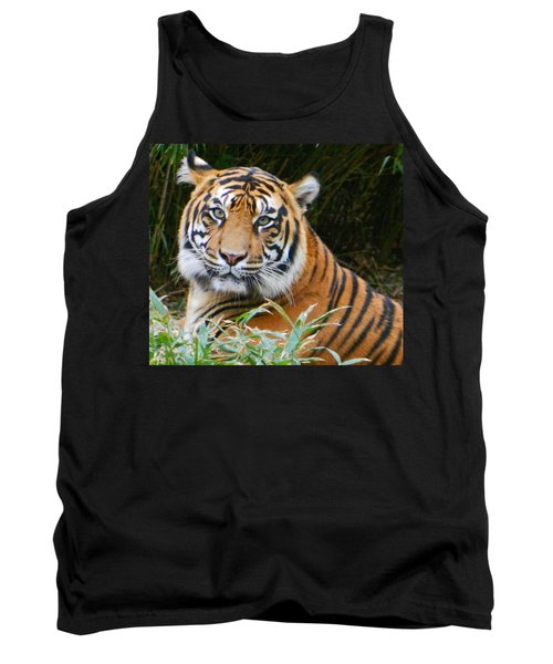 The Eyes Of A Sumatran Tiger Tank Top by Emmy Marie Vickers