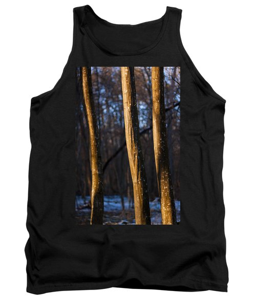 Tank Top featuring the photograph The Three Graces by Davorin Mance
