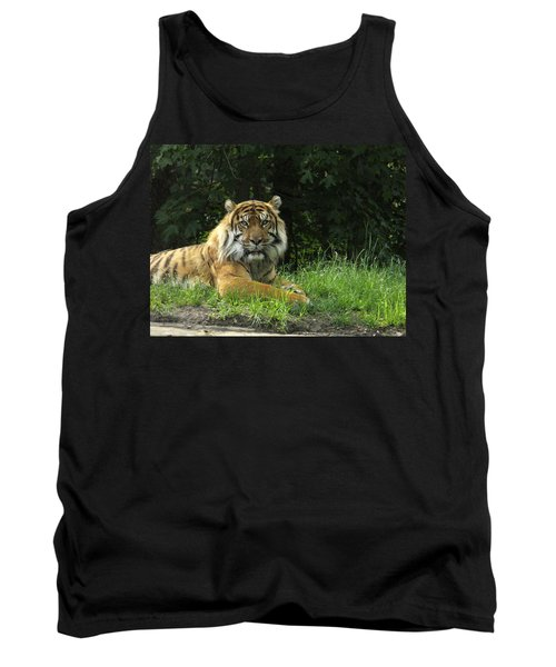 Tank Top featuring the photograph Tiger At Rest by Lingfai Leung
