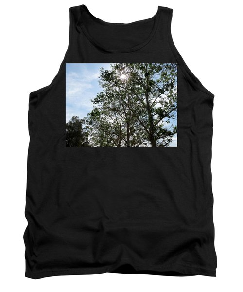 Trees At The Park Tank Top by Laurel Powell