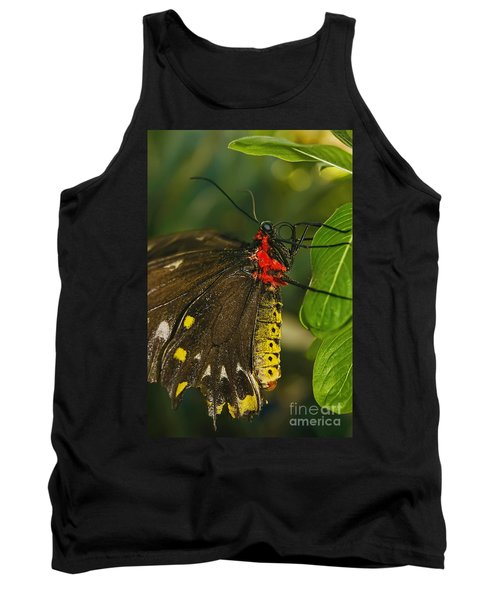 Tank Top featuring the photograph Troides Helena Butterfly  by Olga Hamilton