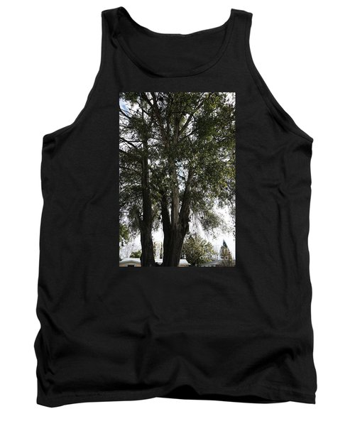Up-view Of Oak Tree Tank Top