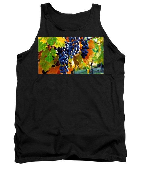 Vineyard 2 Tank Top by Xueling Zou