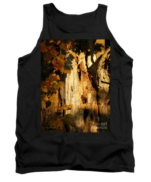 What's In The Crevasses? Tank Top